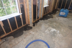 Removing Mold