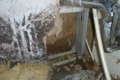 686838-mildew-issue-columbia-sc