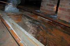 686845-mold-remediation-columbia-sc