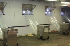 686846-mold-removal-columbia-sc-01