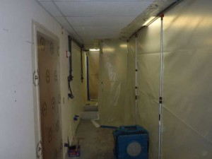 Mold Removal Gallery
