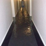water damage cleanup columbia sc