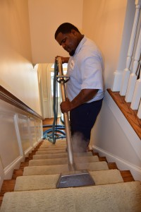 professional carpet cleaning columbia